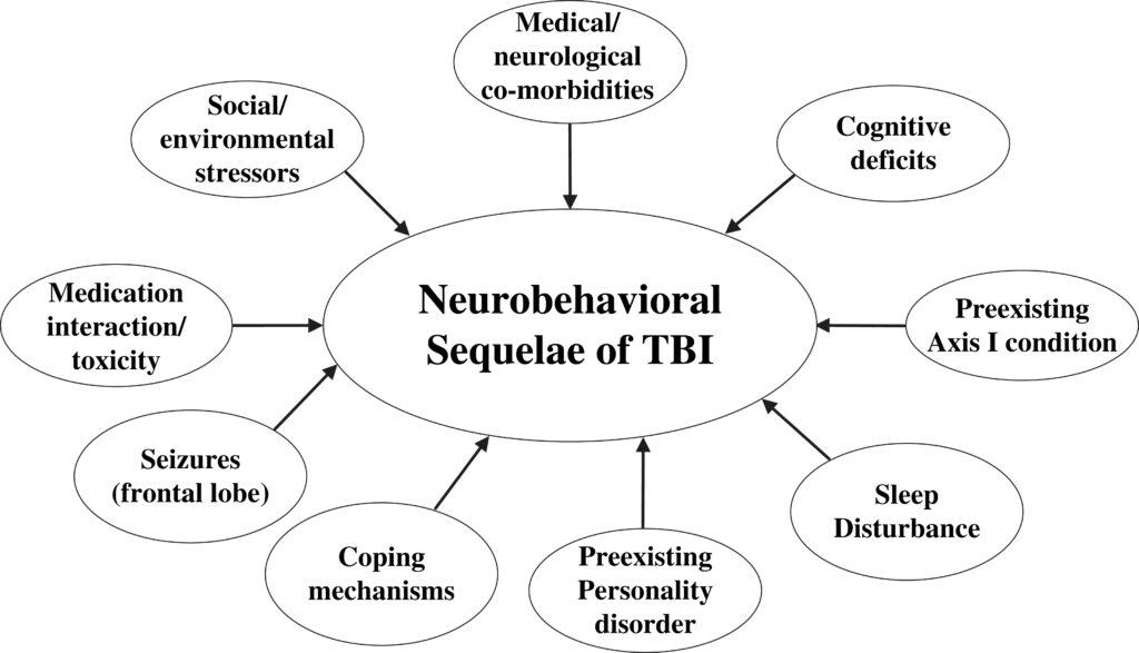 Traumatic Brain Injury and Its Neurobehavioral Sequelae
